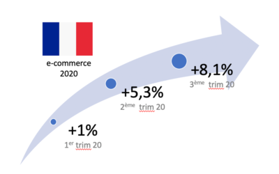 Le e-commerce français continue sa progression en 2020